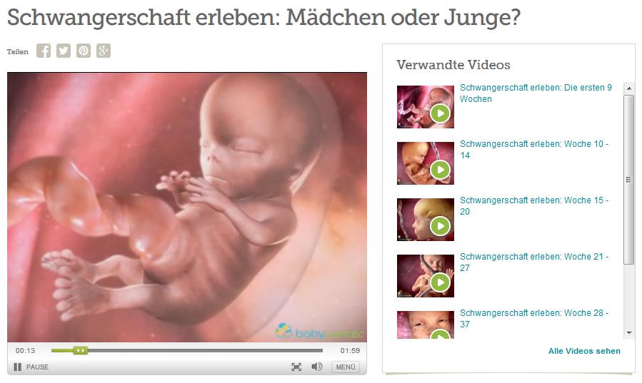 Abbildung 4: 3D-Videos zur Entwicklung des Embryos Quelle: http://www.babycenter.de/v32948/schwangerschaft-erleben-m%C3%A4dchen-oder-junge